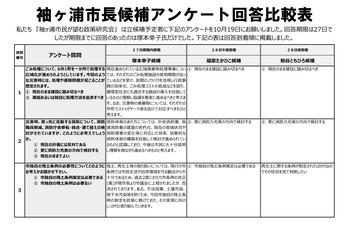 QuestionnaireAnswer_01.jpg